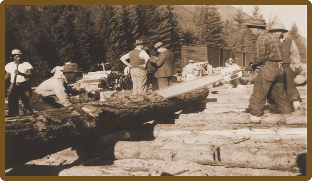 Many of the Japanese Canadians worked in the logging industry.