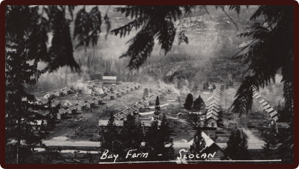A photo of a portion of Bay Farm - one of the Slocan Valley Internment Camps