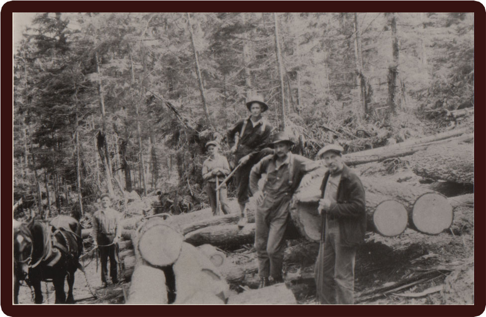 When logging was done with horses!