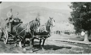Ore Wagon at Slocan c. early 1900s - believed to be James Rae and his son Archie on the wagon