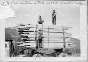 White Pine match stock sold to Powells in Nelson c.1950